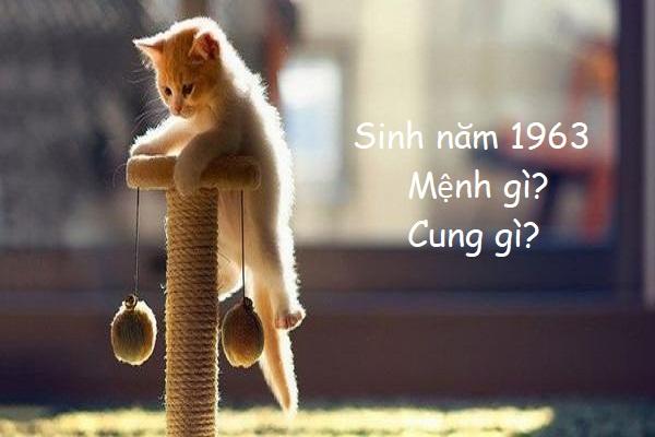 Sinh năm 1963 mệnh gì? 1963 năm nay bao nhiêu tuổi